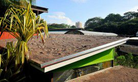 green roofs and walls This document provides a review of current guidance and specialist fire testing on green roofs and green wall systems.